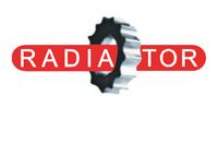 Лого Радиатор Омск